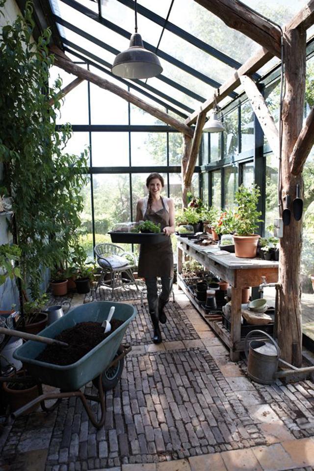 Aktiviti tanam sayuran, bunga dan pokok dalam rumah kaca akan menenangkan minda anda setiap hari
